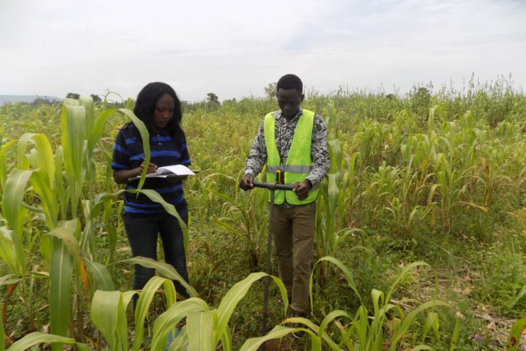 Environmental Assessment and Technical Evaluation
